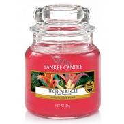 Yankee Candle Tropical Jungle - Tropical Jungle Scented Candle Classic Small Glass 104g
