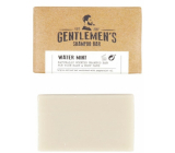 Castelbel Water mint 2 in 1 solid shampoo for hair and body for men 35 g