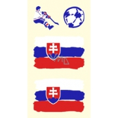 Arch Tetovací obtisky na obličej i tělo Slovensko vlajka 1 motiv