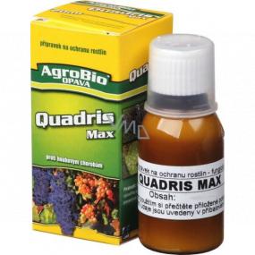 AgroBio Quadris Max preparation against fungal diseases for protection of vines against grape mildew and grape mildew 250 ml