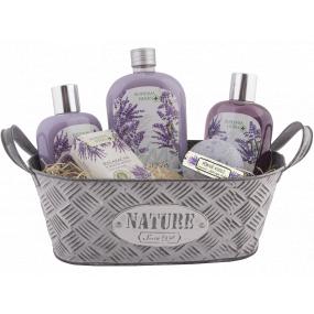 Bohemia Cosmetics Lavender tinsel hair shampoo 250 ml + shower gel 250 ml + bath foam 500 ml + foaming ball 100 g + toilet soap 100 g + tin box, cosmetic set
