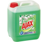 Ajax Floral Fiesta Spring Flower Lily of the valley universal cleaner 5 l