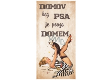 Bohemia Gifts Decorative painting for hanging Home without a dog 20 x 40 cm