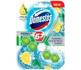 Domestos Power 5 Green Tea & Citrus WC block 55 g