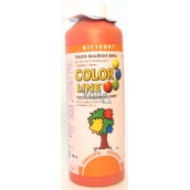 Kittfort Color Line liquid paint Terracotta 500 g
