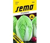 Semo Zelí pekingské Manoko F1 hybrid 40 semen