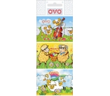 Ovo Foil for eggs Lambs 1 package = 9 pictures (shrinking shirt)