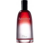Christian Dior Fahrenheit Cologne Cologne for men 125 ml