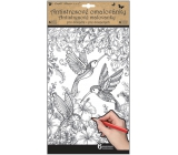Creative coloring book butterflies and birds 6 motifs, 6 sheets 36.5 x 21.5 cm