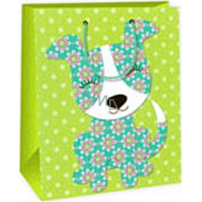 Ditipo Gift paper bag 26.4 x 13.7 x 32.4 cm light green male AB