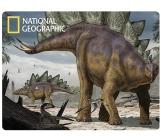 Prime3D postcard - Stegosaurus 16 x 12 cm