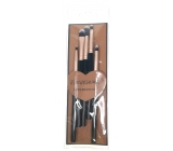 YiQian Set of brushes 5 pieces 163