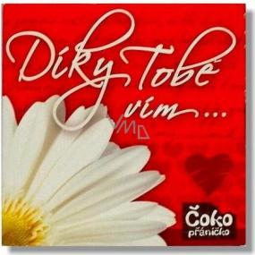 Nekupto Čokopřáníčko Thanks to you, I know ... chocolate 65 g out of love