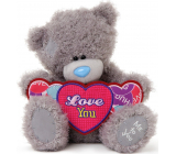 Me to You Teddy bear with a heart with Love You 25 cm