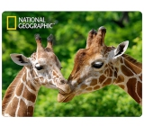 Prime3D postcard - Giraffe 16 x 12 cm