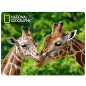 3D Postcard- Giraffe 16 x 12 cm