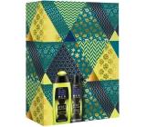Fa Men Sport Energy Boost 250 ml shower gel + Men Sport Energy Boost 150 ml men's antiperspirant spray