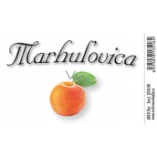Arch Sticker Marhulovica large label 8,5 x 5,5 cm 3516-SK
