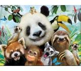 Prime3D Poster - Zoo Selfie 39.5 x 29.5 cm