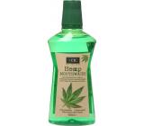 Xoc Hemp Mouthwash mouthwash with hemp extract 500 ml