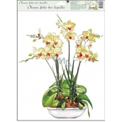 Room Decor Window film without glue orchids yellow-white 42 x 30 cm