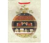 Albi Dárková papírová taška střední 23 x 18 x 10 cm Vánoční TM4 96249