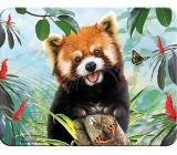 3D Magnet - Panda Red 9 x 7 cm