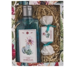 Bohemia Gifts & Cosmetics Cactus Olive and Grape Oil Shower Gel 200 ml + Handmade Soap 30 g Cosmetic Cassette