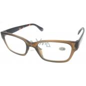 Berkeley Reading glasses +1.0 plastic brown, tiger side 1 piece ER4198