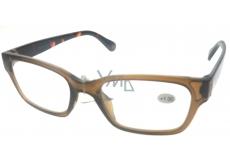 Berkeley Reading Glasses +1 Plastic Brown ER4198