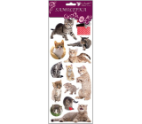Room Decor Stickers cats, cat in the grass 34.5 x 12.5 cm
