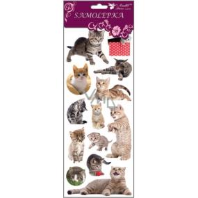Room Decor Stickers, cat in grass 34.5 x 12.5 cm