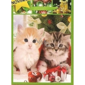 Nekupto Gift paper bag big 32,5 x 26 x 13 cm Christmas 1482 50 WBL