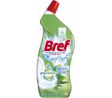 Bref Pro Nature Mint & Eucalyptus WC gel against limescale 700 ml