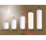 Lima Gastro Smooth Candle Ivory Cylinder 80 x 250 mm 1 Piece