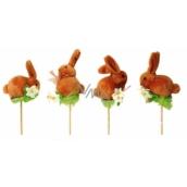 Hare brown recess 7 cm + skewers