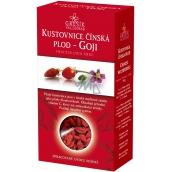 Goji Kustovnice Chinese Fetus - Goji 100g 2867