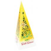 Christmas pack of green tea, honey and cinnamon 20 x 2 g 17000 1095