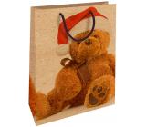 Nekupto Gift kraft bag 28 x 37 cm Christmas with teddy bear 600 WKHL