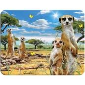 Prime3D magnet - Meerkat 9 x 7 cm