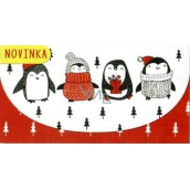 Greeting Card 3523 K - Christmas money envelope 116x220mm