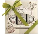 Bohemia Gifts & Cosmetics Tea Spa Bath Bath 250 ml + shower gel 200 ml + hair shampoo 200 ml, cosmetic set