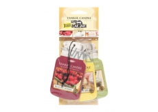 Yankee Candle Afternoon Picnic - afternoon picnic car tag paper set 3 x 12 g