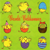 Nekupto Easter Card Happy Easter Lots of days full of sunshine 100 x 100 mm 3555 XI