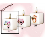Lima Owls 2 owls candle with decal white cube 45 x 45 mm 1 piece