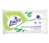 Linteo Kitchen wet wipes 40 pieces, 180 x 200 mm