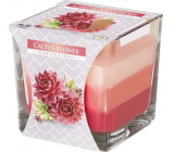 Bispol Cactus Flower - Cactus flower tricolor scented candle glass, burning time 32 hours 170 g
