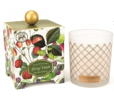 Michel Design Works Forest Fruits Soy handmade scented candle in glass 397 g