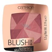 Catrice Blush Box Glowing + Multicolour blush 020 Its Wine Oclock 5.5 g
