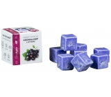 Cossack Black currant natural fragrant wax for aroma lamps and interiors 8 cubes 30 g